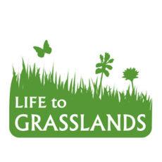 Ohranjanje in upravljanje suhih travišč v vzhodni Sloveniji