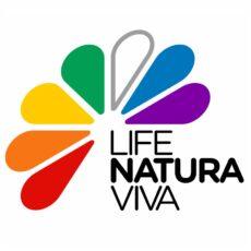 Biodiversity – Art of Life